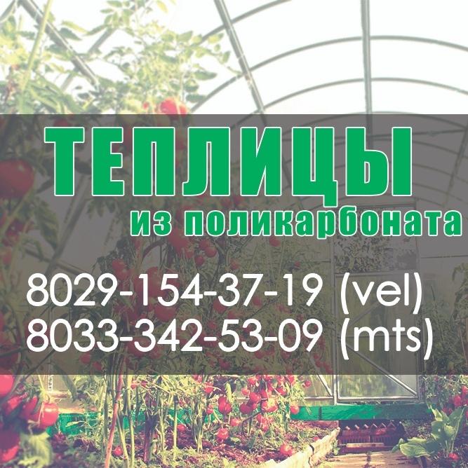 Купить теплицу из поликарбоната в Минске. Парники недорого с доставкой | Agroparnik.by